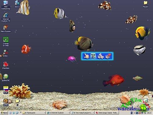 digifish aqua real 2 1080p screensaver descargar gratis